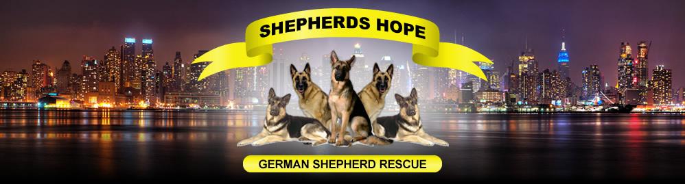 Shepherds Hope Rescue